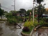 セブ台風2